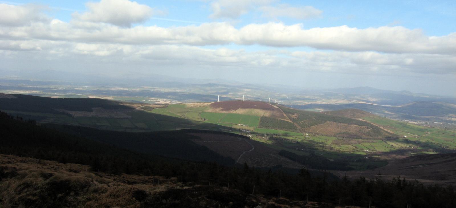 Mt-Leinster-cropforweb